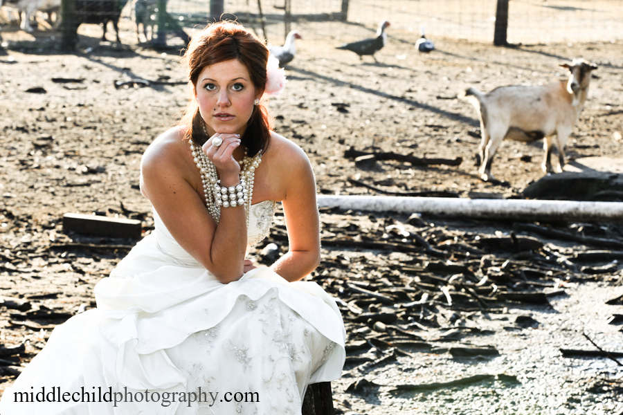 Trash the dress myrtle beach