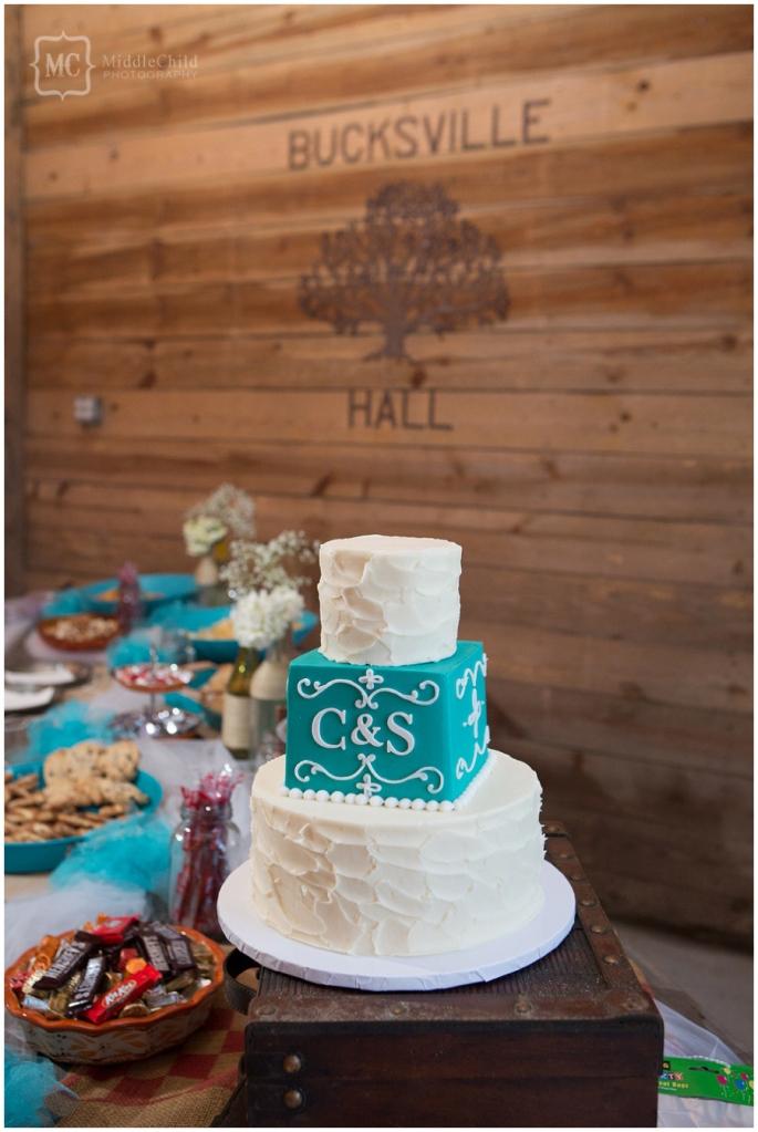 thompson farm wedding (43)